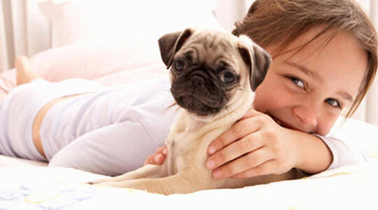 child with pug puppy