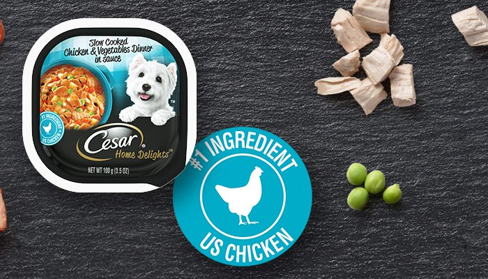 CESAR slow cooked chicken home delights flavor dog food