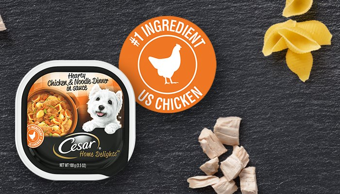 CESAR chicken and egg home delights flavor dog food