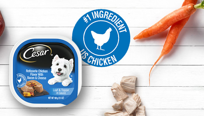 CESAR chicken and carrots flavor dog food
