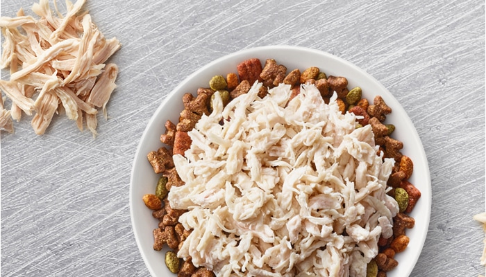 chicken and dog food in bowl
