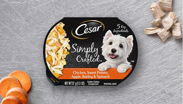CESAR simply crafted chicken and apple dog food
