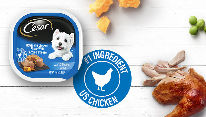 chicken and cheese flavor dog food